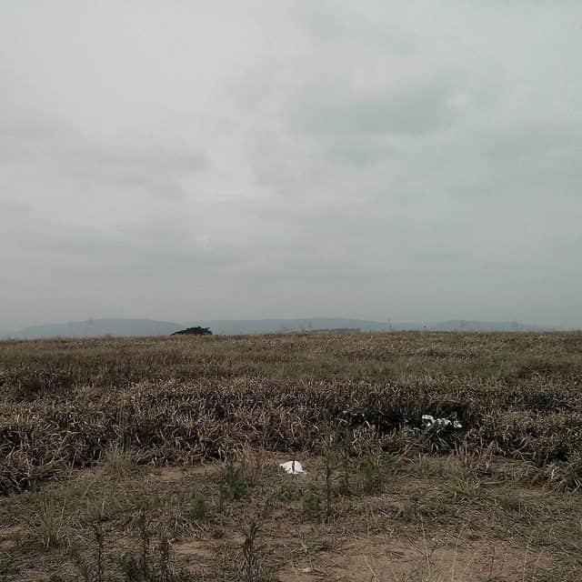 descampado, com grama mal cuidada e pós queimada, ao longe, uma árvore e mais longe ainda, montanhas
