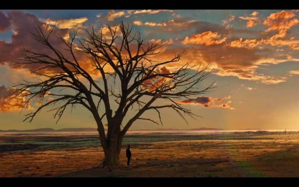 campo iluminado pelo sol ao fundo, nuvens acima, e mais próximo uma árvore sem folhas. No tronco, um homem observa o sol (preacher)